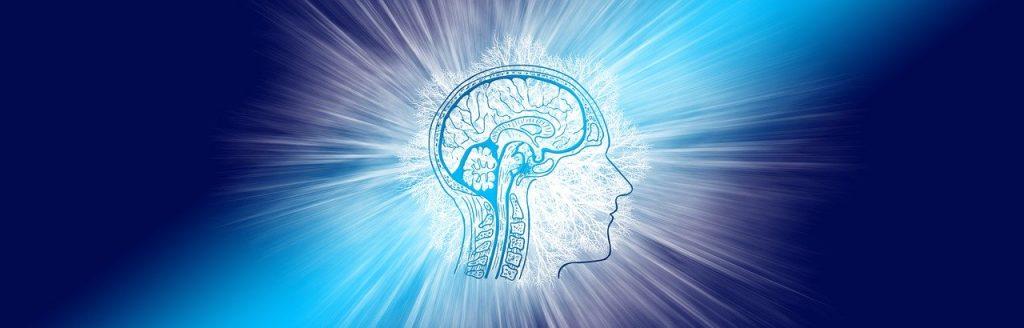 cerveau-humain-connexion-ondes