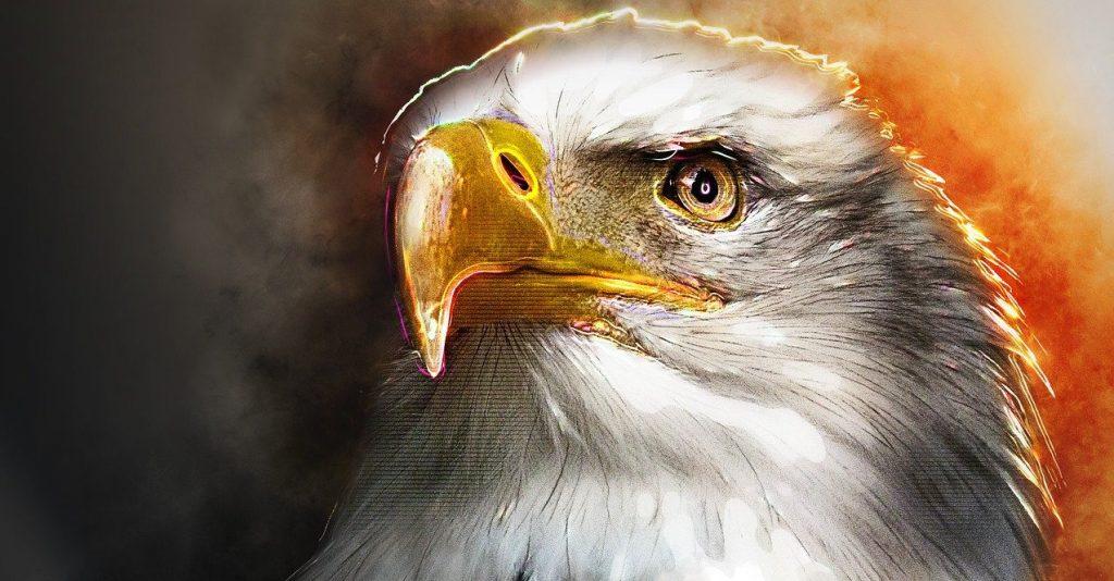 aigle-animal-de-pouvoir-totem